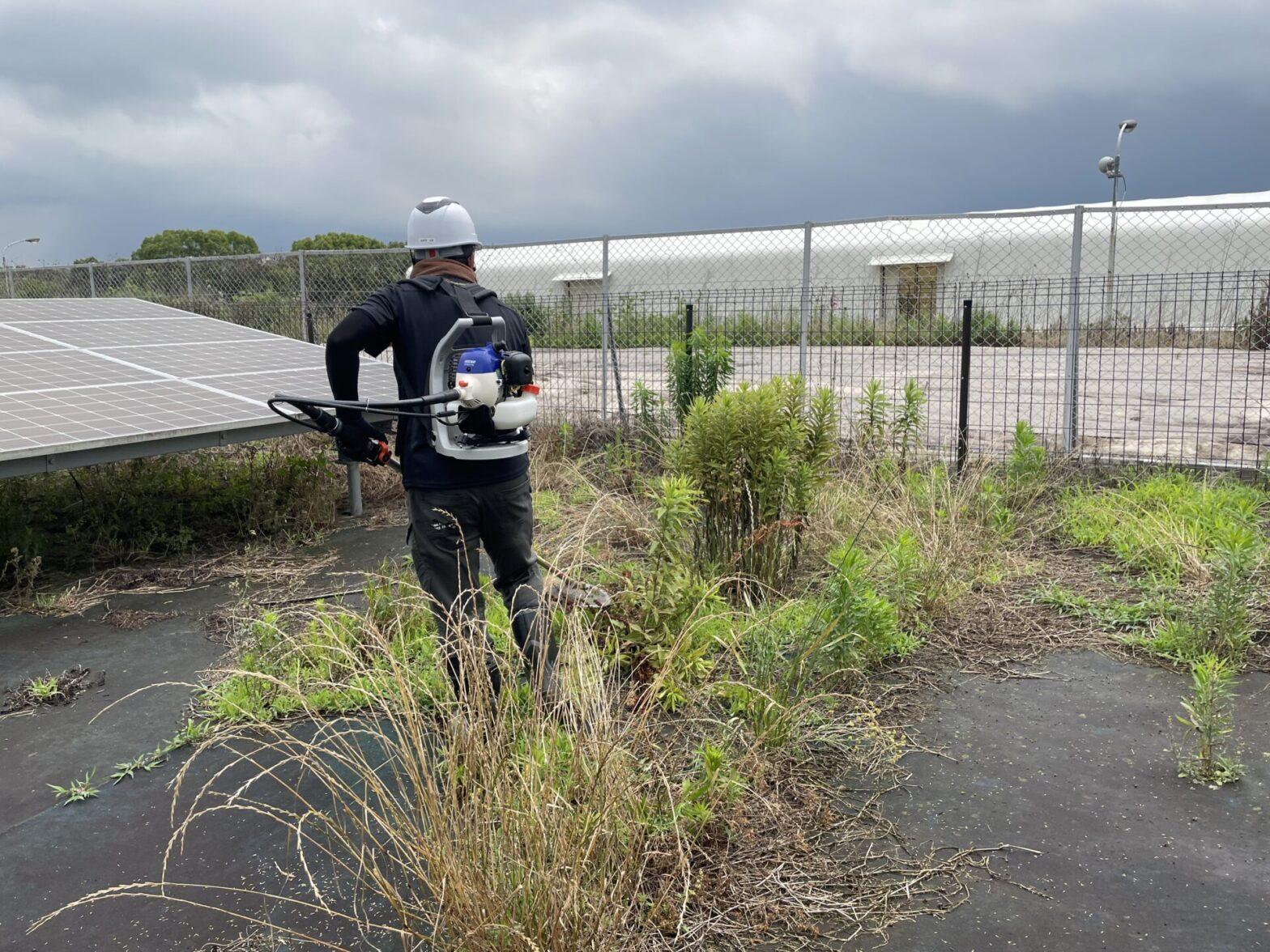 三重県鈴鹿市太陽光発電所除草作業