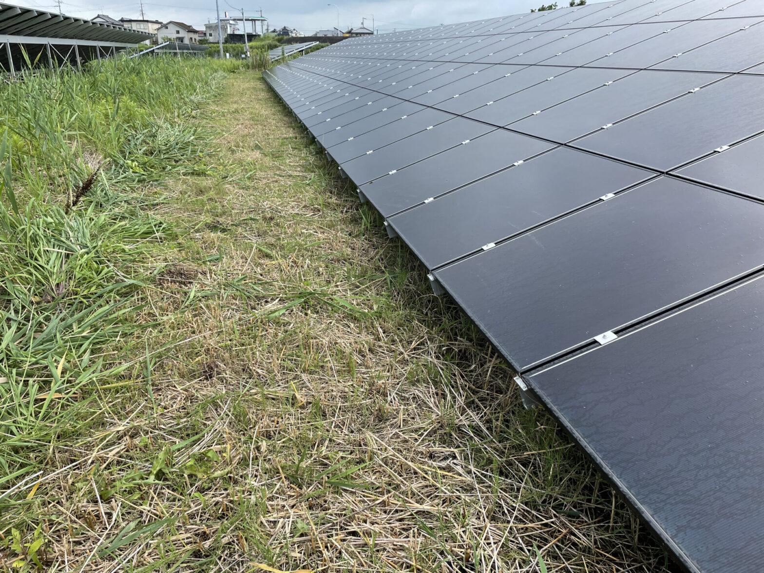 三重県松阪市猟師町太陽光発電所電灯化工事・草刈り