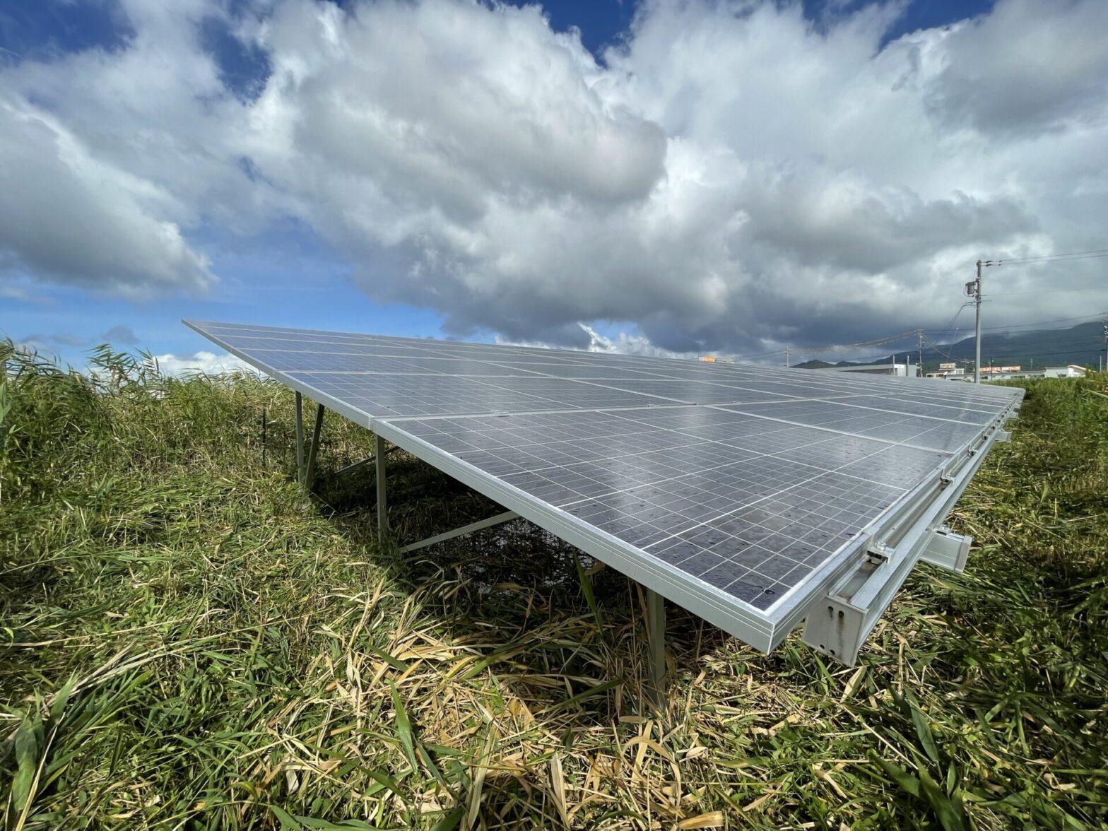 三重県伊勢市一色町太陽光発電所草刈り作業